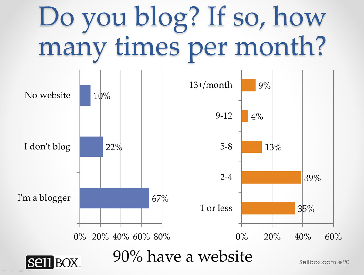 2013 eBook Self-Publishing Survey-Blogging